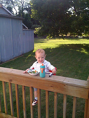 River eating his first dinner at the new house, secured to the railing with the barn, yard, and tree behind.